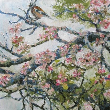 Blossom, Jay - 50cm x 50cm