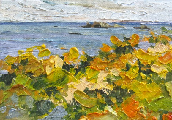 Gorse - Isles of Scilly - 12.5cm x 18cm